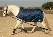 Rhinegold Horse Walker/Lunge Rug/Exercise Sheet. Waterproof. All Sizes.